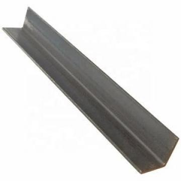 ASTM 304 (316L) Polished Stainless Steel Unequal Angle Bar