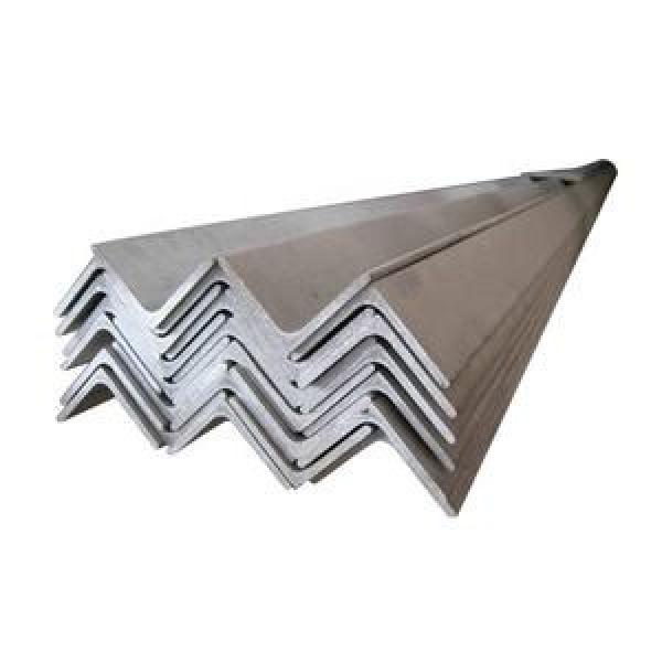 Unequal Steel Slotted Angle/Light Duty Angle Racking System/OEM Services Provided #1 image